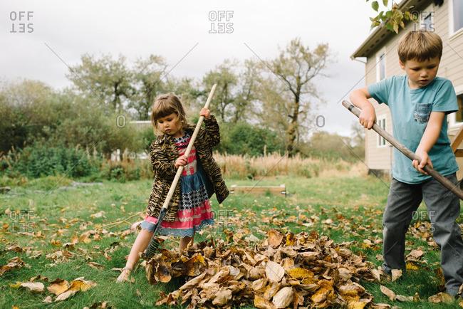 Two young siblings raking leaves in their yard