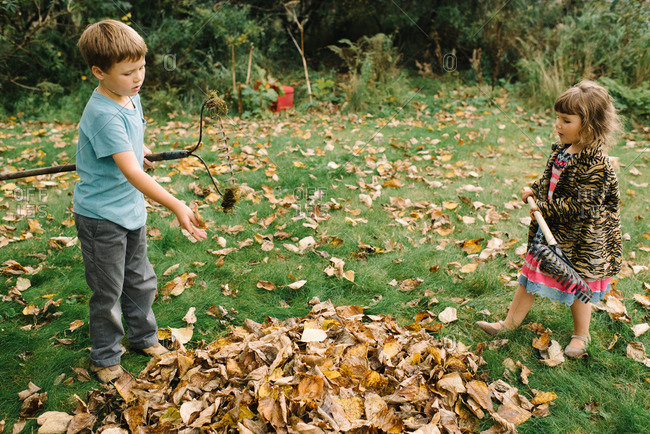 Two young children raking leaves into pile