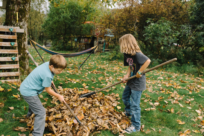 Two boys working together to rake pile of leaves