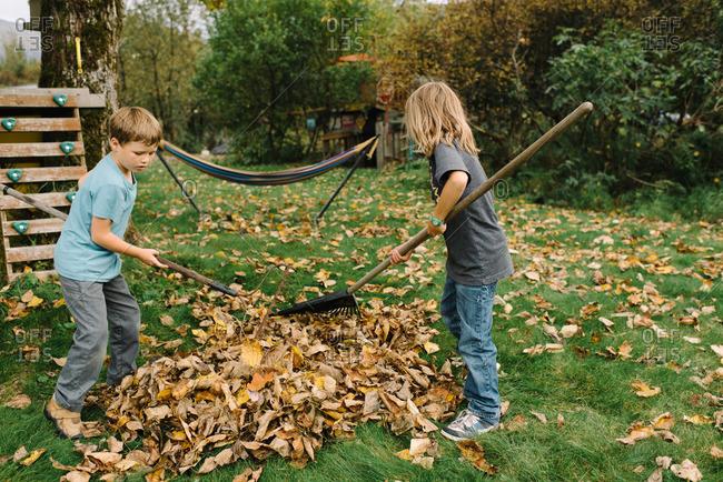 Two boys raking pile of leaves in backyard