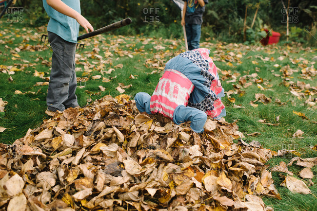 Girl putting her head into a pile of leaves