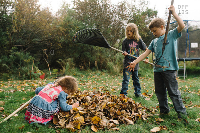 Three siblings raking leaves in backyard