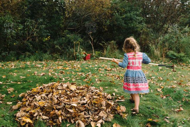 Young girl making a pile of leaves