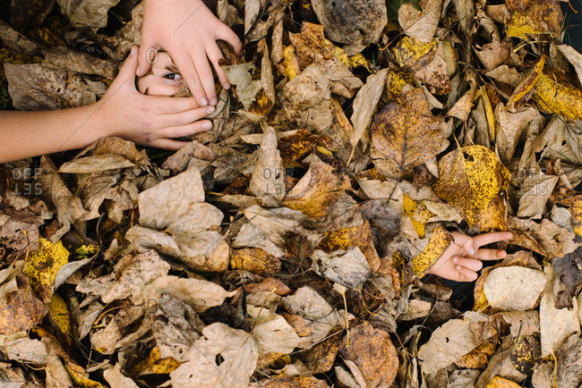 Child's hands framing leaf-covered sibling's eye