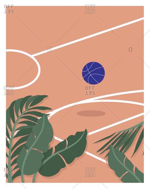 Basketball on court by palm fronds