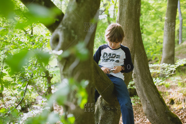 Boy sitting on tree in the woods whittling a stick