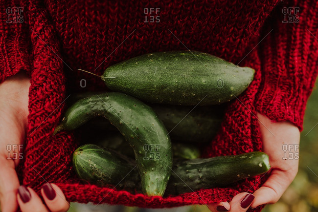 A woman holding a sweater full of cucumbers