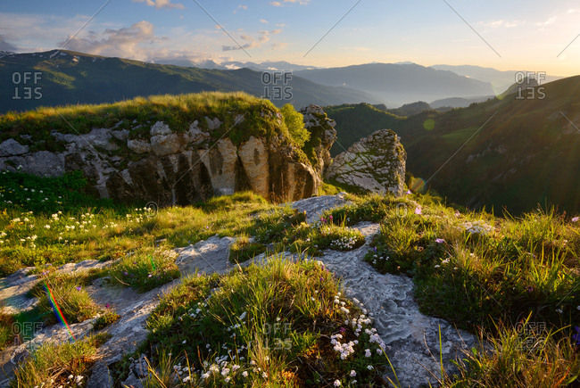 Landscape with wildflowers and rocks, Bolshoy Thach (Big Thach) Nature Park, Caucasian Mountains, Republic of Adygea, Russia