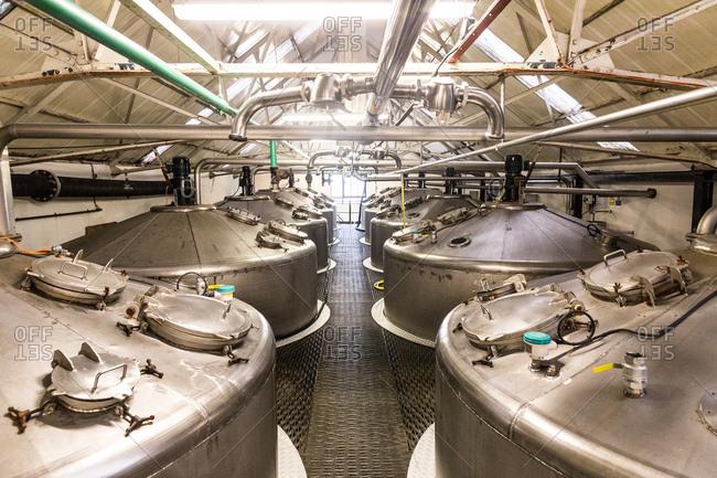 Rows of whisky stills in whisky distillery