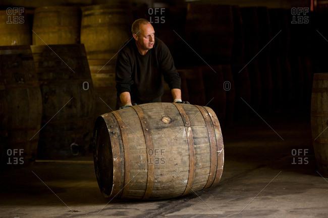 Worker rolling whisky cask in whisky distillery