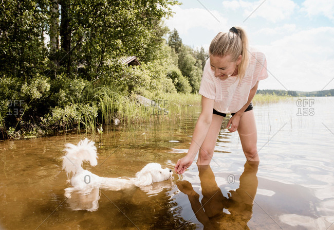 Woman with Coton de tulear dog in lake, Orivesi, Finland