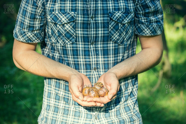Man holding handful of foraged snails, Vogogna, Verbania, Piemonte, Italy