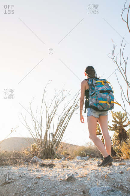 Rear view of  hiker looking away, Anza Borrego, California, USA