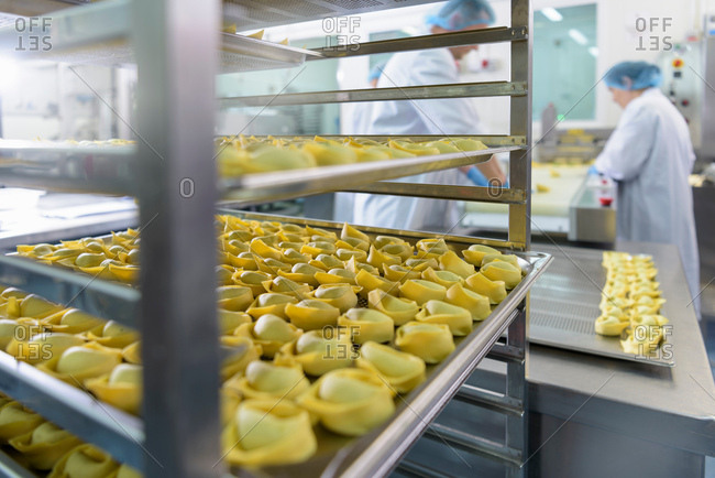 Workers hand making tortellini pasta in pasta factory