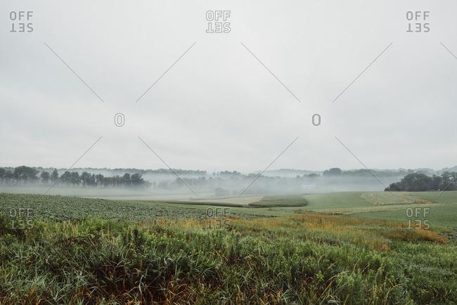 Bucolic scene of fog over farm fields
