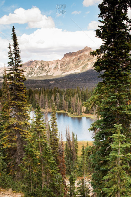 Lake in forested mountain setting