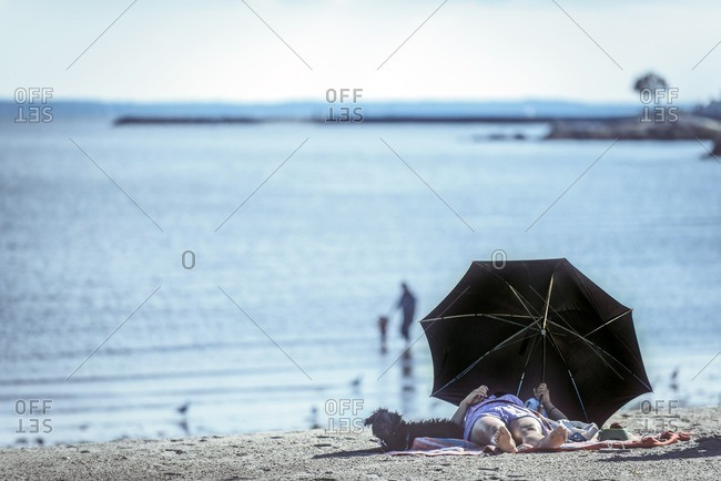 Lady with her dog on the beach