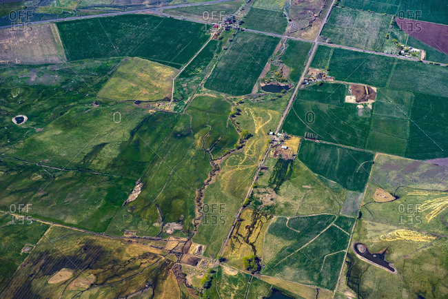 Aerial view of green farmland plots, Cedarville, California, United States,