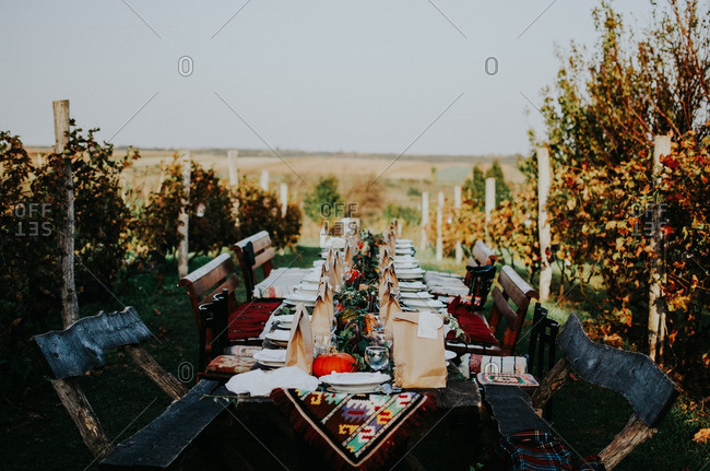 Rustic table set for an outdoor dinner party in the countryside