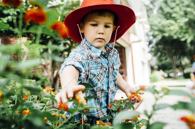 Caucasian boy wearing cowboy hat picking flowers in garden