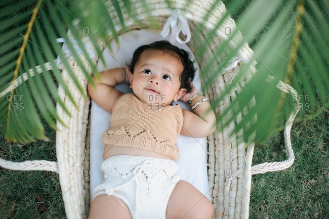 Baby in basket under palm leaves