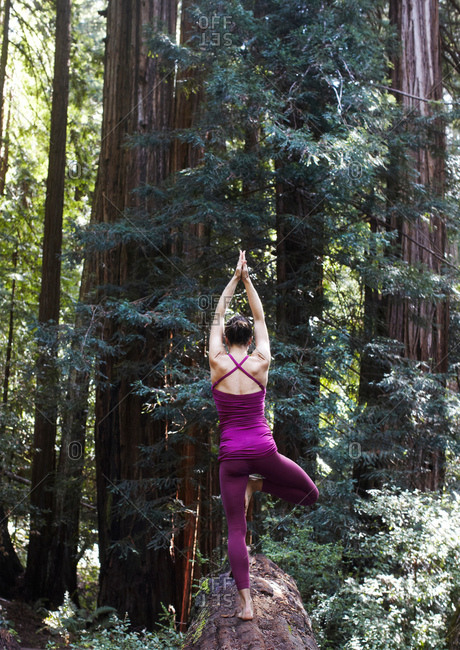 Mid adult woman doing yoga in forest, in tree pose, rear view