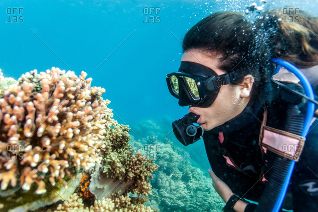Young woman looking at hard and soft corals whilst scuba diving, Moalboal, Cebu, Philippines