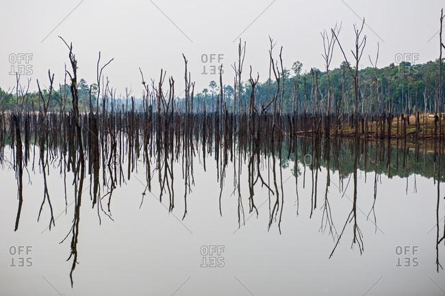 Deforestation at man made water dam, Thakhek, Khammouane, Laos