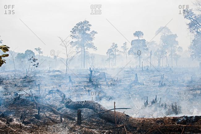 Deforestation on misty landscape, Thakhek, Khammouane, Laos