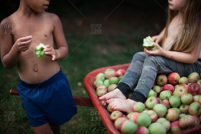 Two children with a wheelbarrow full of apples