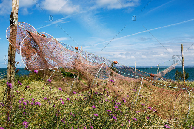 Fishing nets from the Offset Collection