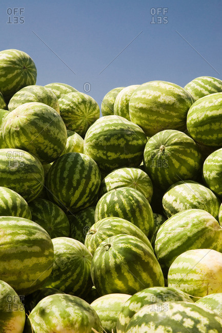 Pile of watermelons at market