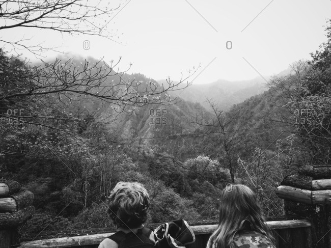 Children looking over forested hills
