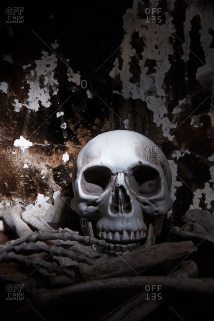 Human skull and bones