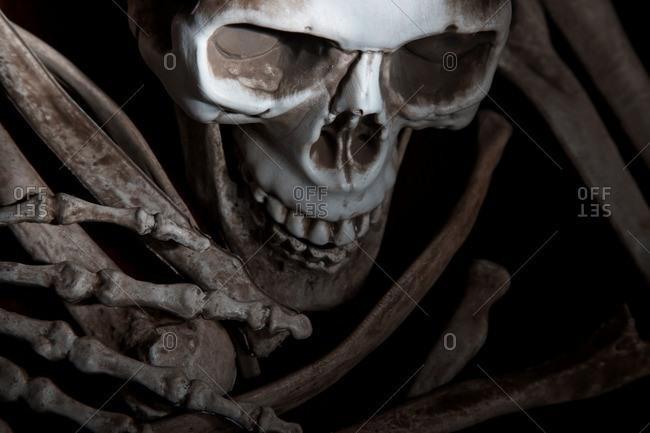 Human skull and bones decoration