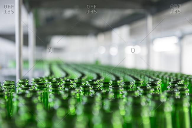 A conveyor belt filled with beer bottles at a beer bottling factory