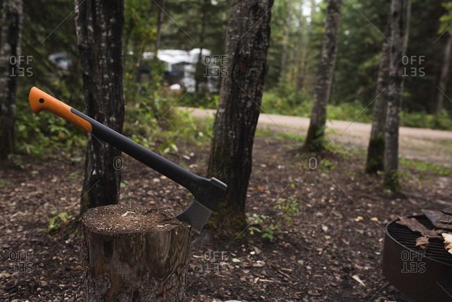 Axe for chopping firewood lodged in a stump at a campground