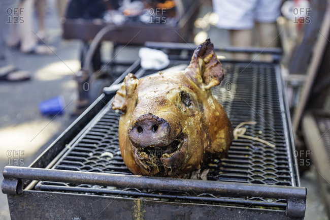 A pig's head on a grill at summer barbecue