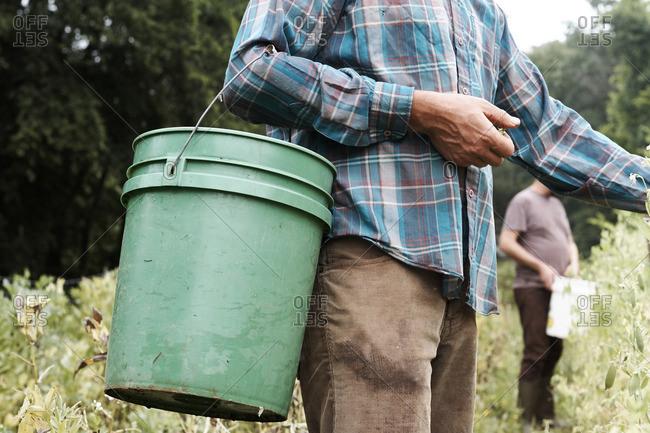 Man with a bucket in a garden