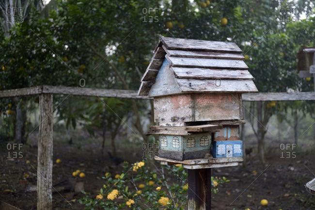 Brazil, Para, Trairao, Amazon rainforest, Agrarian Reform Areia, apiary