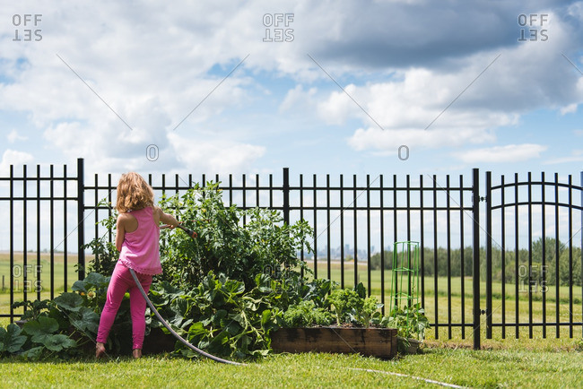 Young girl watering plants in a raised bed garden