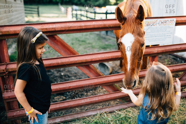 Sisters petting and feeding a horse in a barnyard