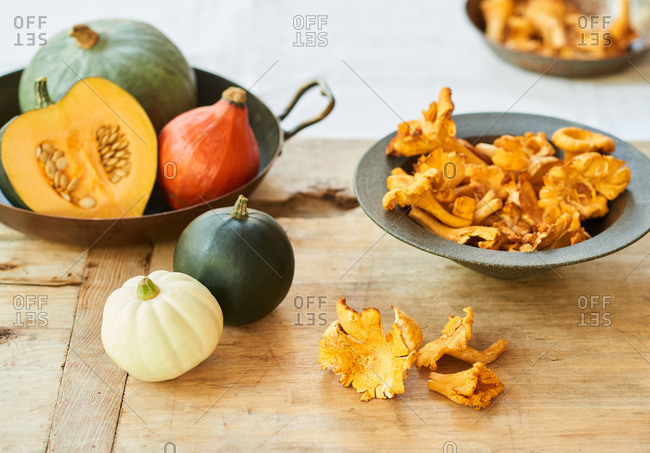 Wild chanterelle mushrooms and small pumpkins and squashes