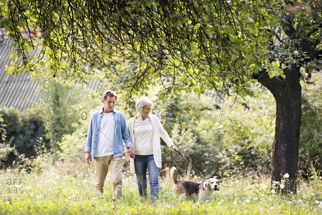Senior couple on a walk with dog in nature