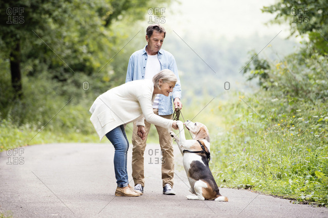 Senior couple with dog in nature