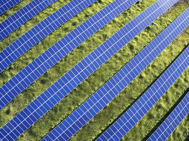 USA North Carolina Lowlevel aerial photograph of solar panels in a solar farm