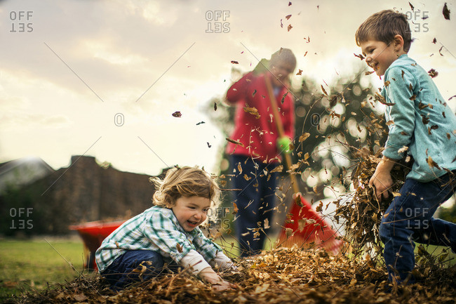 Two young boys playing in the leaves, as their Grandmother rakes the lawn.