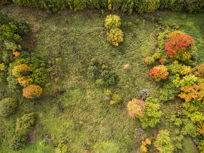 An aerial of Vilnius, Lithuania in the fall