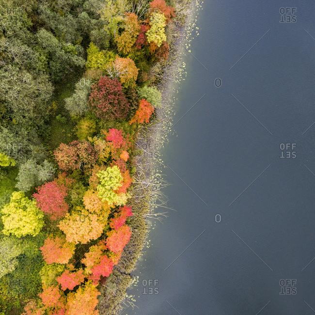 Fall scenic in Dubingiai, Lithuania