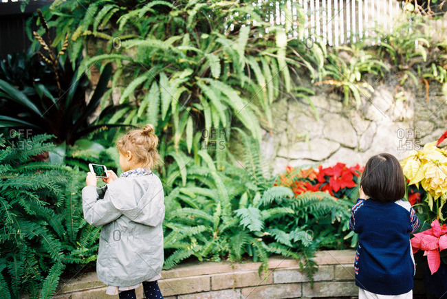 Children taking pictures of plants